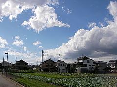 091008台風一過