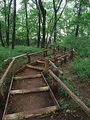 090616妙音沢に降りる階段