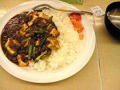 080602麻婆豆腐カレー