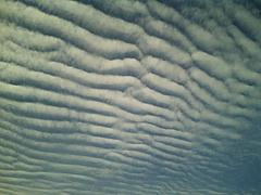 091120鰯雲