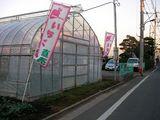 070110苺農園