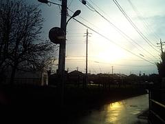 110411雨上がり
