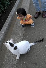 100706はるかちゃん&ミーちゃん
