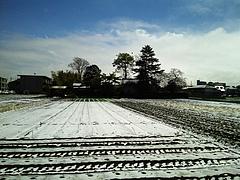 100417雪景色