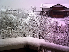 100218雪景色