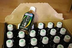 080801カテキン緑茶