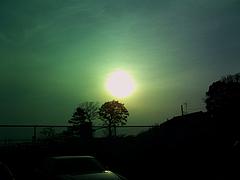 100419陽光