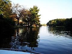 091107石神井公園ボート池