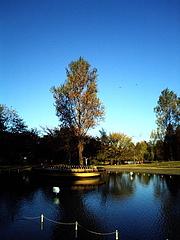091103彩の森入間公園