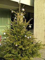 091127クリスマスツリー@国立西洋美術館