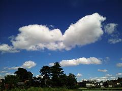 100811雲