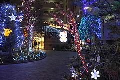 101128クリスマスイルミネーション