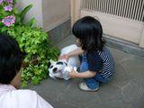 070628あやかちゃん&ミーちゃん