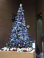 101202クリスマスツリー