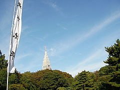081102明治神宮から代々木方面