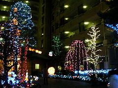 091222クリスマスイルミネーション