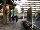 環状7号高円寺付近