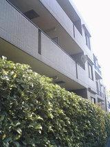 東京都区部の小規模マンション