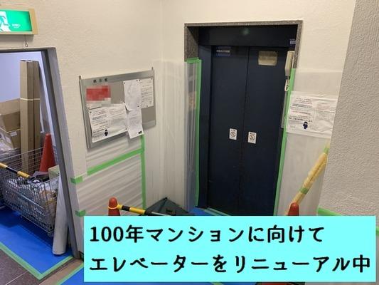 1階(セントラルハイツ) (12)