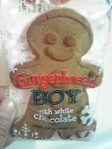 gingerbreadboy