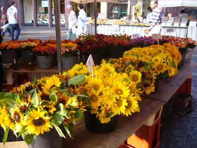 市場の秋の花1