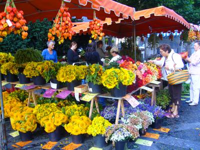 市場の秋の花3
