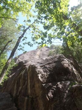 屋根岩蜘蛛糸
