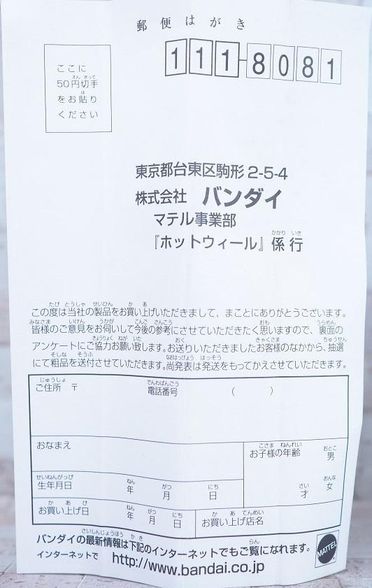P6139961
