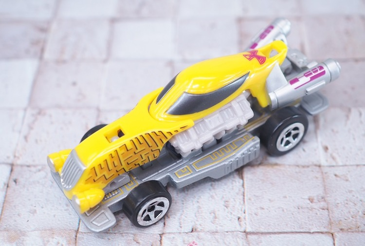 P6139930