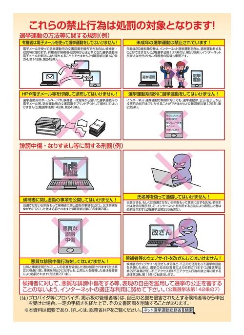 ネット選挙 000225177-page-002