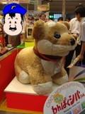 東京おもちゃショー 2009 柴犬