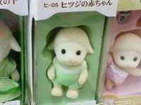 ヒツジの赤ちゃん