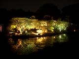 「宵待庭園」沢の池風情