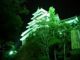 岡山城天守閣のライトアップ風情