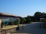 岡山後楽園の盆景を垣間見る 岡山城 2008.10.28