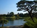 後楽園「沢の池」に臨む岡山城(烏城) 2008.10.28