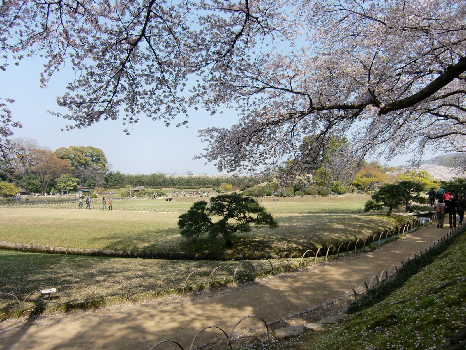 岡山後楽園の桜と唯心山(ゆいしんざん) 2009.4.7  「 一気に咲く桜の瞬発力を授かり 」