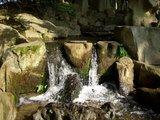 花葉の池の小瀧