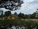 岡山城を垣間見て 2007.4.5
