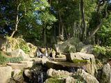花葉の池の小滝