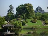 特別名勝 岡山後楽園の「沢の池」