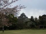 桜と岡山城 2007.4.3