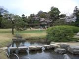 水と桜と城姿 2007.4.3