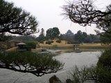 珍しき光景の岡山城