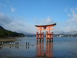 2008年元旦 厳島神社 大鳥居の満ち始め