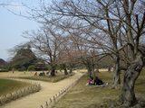 後楽園内の様子 2007.3.28