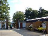 岡山県後楽園菊花大会の総合花壇 2008.11.15