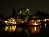 「宵待庭園」沢の池(さわのいけ)