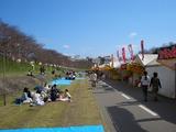 おかやま桜カーニバル 2007.3.30