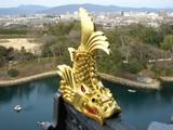 岡山城 新春のシャチホコ